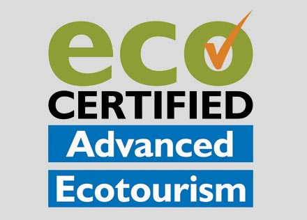 Eco Advanced Logo