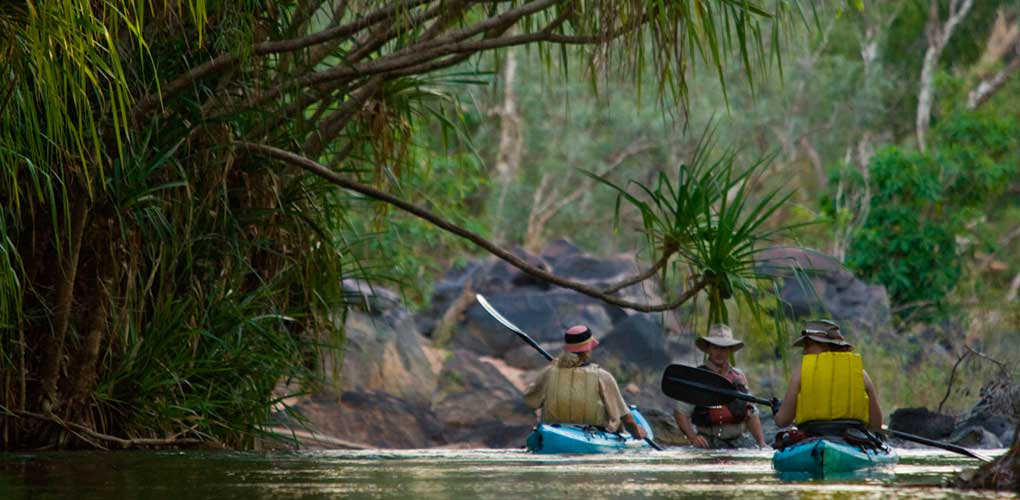 gecko-canoeing-guide